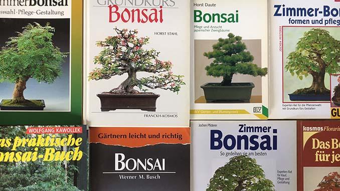 bonsai buch empfehlungen ratgeber